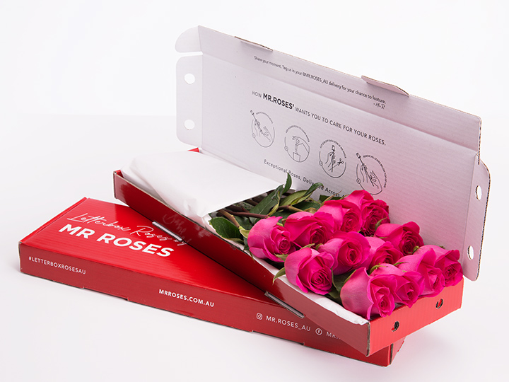 Lucky 8 Bright Pink Roses With Gift Box