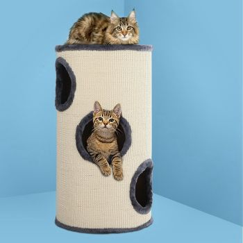 i.Pet Cat Tree Trees Scratching Post Scratcher Tower Condo House Furniture Wood 70cm