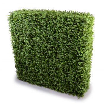 Deluxe Portable Buxus Hedge UV Resistant 150cm Long x 150cm High