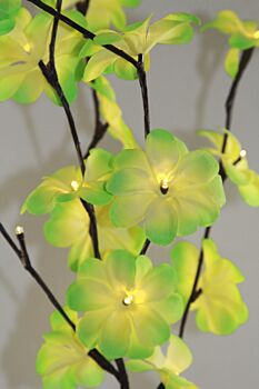 5 Sets of 50cm H 20 LED Green Frangipani Tree Branch Stem Fairy Light Wedding Event Party Function Table Vase Centrepiece Tropical Decoration