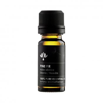 Botany Aromatherapy Essential oil PINE FIR (Abies sibirica)