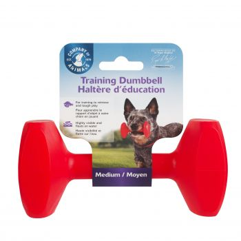 CLIX DUMBBELL MEDIUM