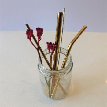 Stainless Steel Straw Set - 2 straws, 1 metal straw cleaner & 100% organic cotton pouch