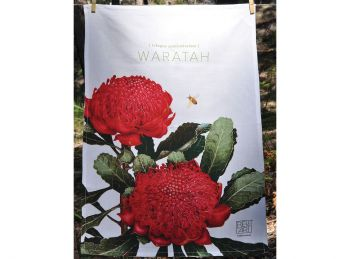 Bella Flora Tea Towels - Waratah