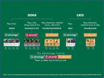 Advantage Flea Control for Dogs 4-10kg - 6-Pack