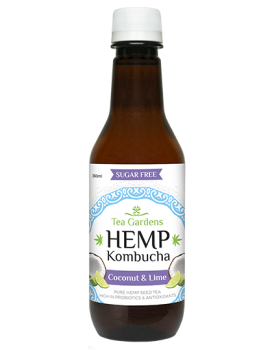 Hemp Kombucha Coconut Lime [48 bottles] - 350ml