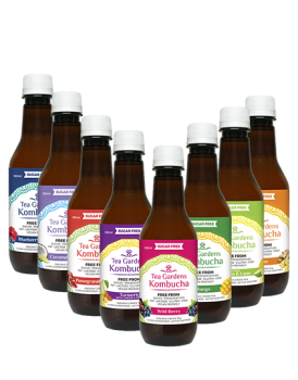 48 x Mixed Flavours Tea Gardens Kombucha - 350ml bottles