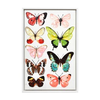 Papillon Enhanced Canvas Print