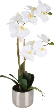 OOLA REAL TOUCH ORCHID IN METALLIC SILVER POT 51CM