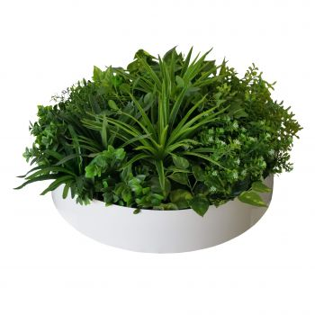 Artificial Green Wall Disc Art 60cm Philodendron (Fresh White)