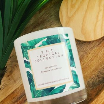 Tropical Collection - Pineapple Coconut & Vanilla - M