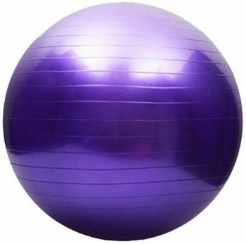 Mad Ally 65cm Exercise Ball Purple
