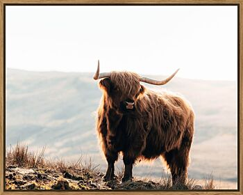 Floating Frame - On top of the World Bovine - 100x80