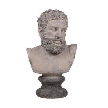 Neo Classical Male Bust