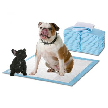 PaWz 100 Pcs 60x60cm Ultra Absorbent Puppy Toilet Training Pads Blue