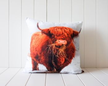Indoor Cushion - Bovine Angus - 45x45