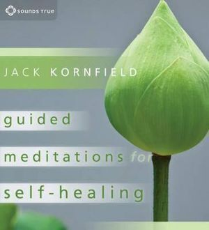 CD: Guided Meditations for Self-Healing (2 CD)