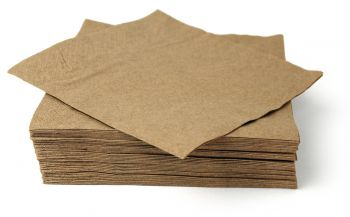 Back to Nature Recycled Paper Napkin - 50pc