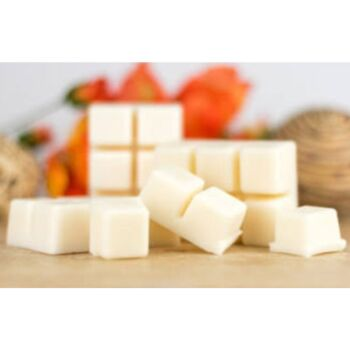6 Cavity Coconut and Lime Wax Melts