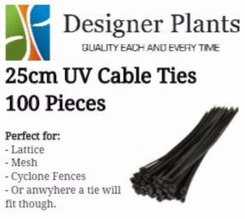 25cm UV Cable ties (wire, mesh or surfaces with holes) - 100 Pack