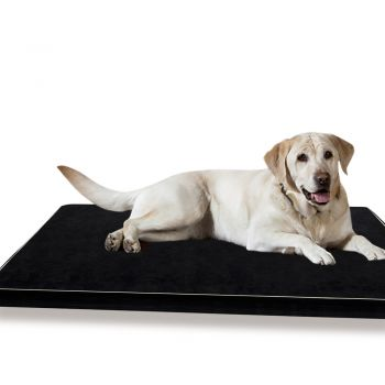 PaWz Soft and Calming Cushion Pillow Mat for Pets 5cm