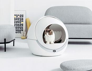 Petree Automatic Cat Litter Box