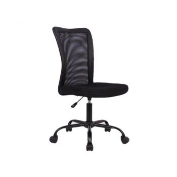 Amable Ergonomic Mesh Low Back Office Chair - Black
