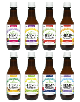 Hemp Kombucha Mixed Flavours [48 bottles] - 350ml