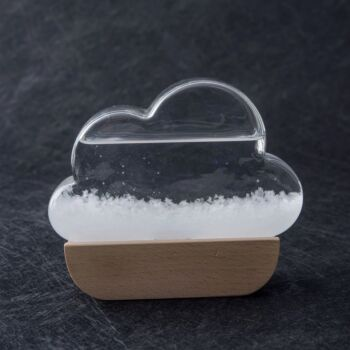 Heebie Jeebies | Fitzroy's Storm Glass | Cloud