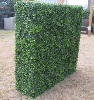 Large Portable Mixed Boxwood Hedge 1.5m by 1.5m UV Resistant