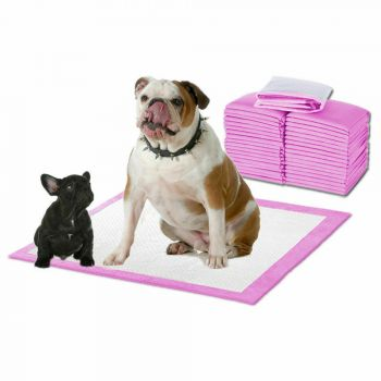 PaWz 400pc 60x60cm Pet Toilet Training Pads Absorbent Pink