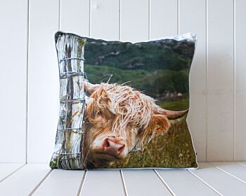 Indoor Cushion - Peaking Bovine - 45x45