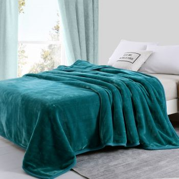 Queen Size Two-Ply Mink Blanket 750GSM Winter Warm in Teal