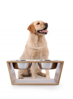 Natural Bamboo Pet Feeder With Stainless Steel Bowls - Large (Brown)
